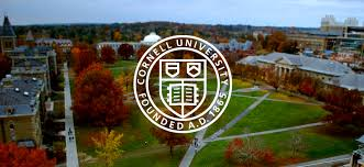 Course on Introduction to Engineering Simulations by Cornell University [6 Weeks, Online]: Enroll Now!