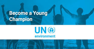 UN Young Champions