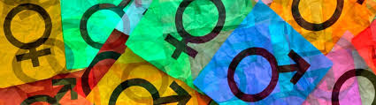 advanced certificate course in gender studies du