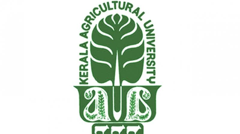 JOB POST: Lecturers @ Kerala Agricultural University; 4 Positions: Apply by Oct 16