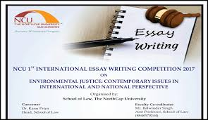 international essay writing competition 2017