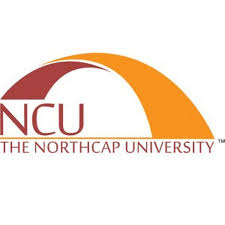 NorthCap University Seminar women critical partners