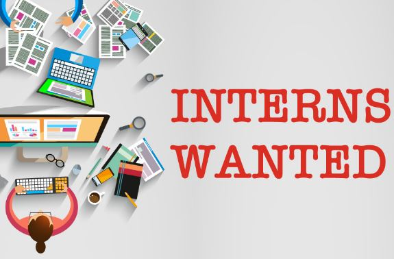 Internship Opportunity Online Marketing Voolsy