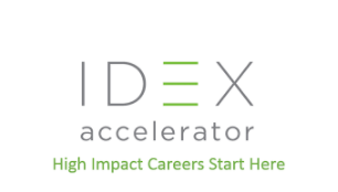 IDEX Global Fellows Program 2019 [Bangalore, July 2-Dec 20]: Apply by April 15: Expired