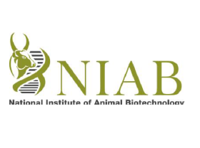 Research Scholars Programme @ National Institute of Animal Biotechnology, Hyderabad: Walk-in on May 11