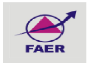 FAER McAfee Engineering Scholarship 2018-19