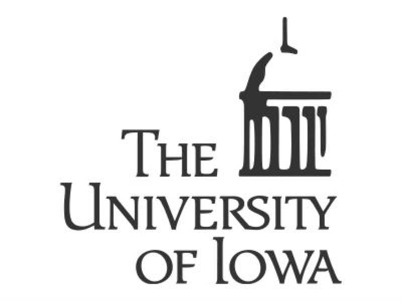 Summer Institute 2019 Writing Program University Iowa