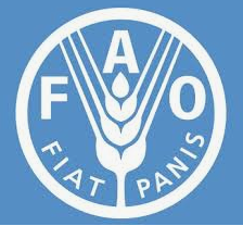 Internship Opportunity @ UN Food and Agriculture Organization [Rome]: Apply by Aug 31