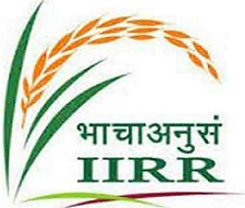 JOB POST: Young Professional/Technical Assistant/JRF @ Indian Institute of Rice Research, Hyderabad: Walk-in-Interview