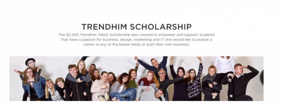 Trendhim Talent Scholarship 2019 UG PG Students