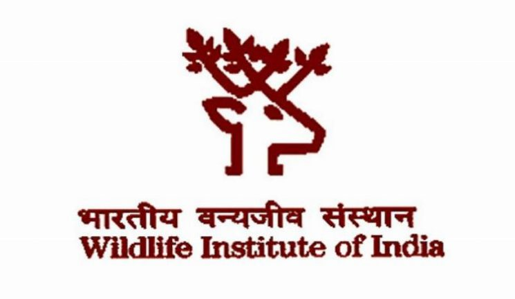 project Job Wildlife Institute India