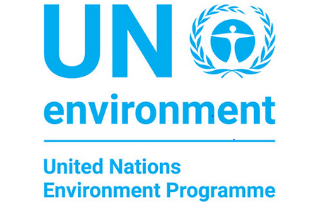 12th Eco-generation Environmental Essay Competition by Samsung and UN Environment [Exciting Prizes]: Submit by Sept 20: Expired