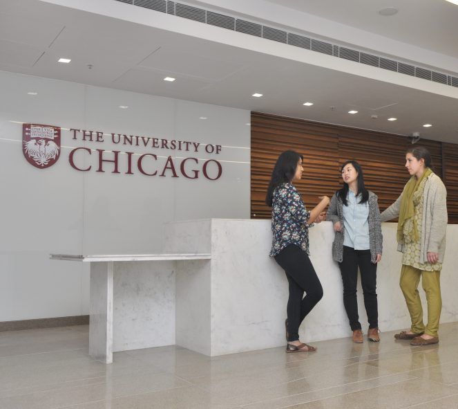 UChicago Centre Delhi Director Job