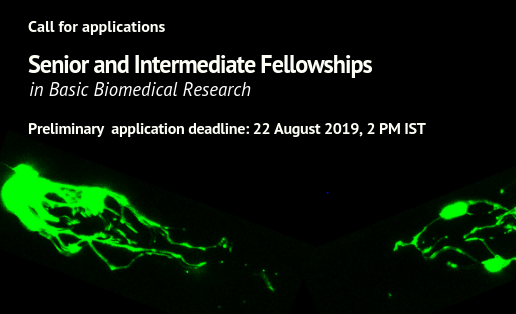DBT India Alliance Senior and Intermediate Fellowships in Basic Biomedical Research: Apply by Aug 22