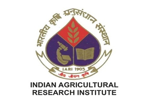 JOB POST: SRF at Indian Agricultural Research Institute, New Delhi: Walk in Interview on Sep 27