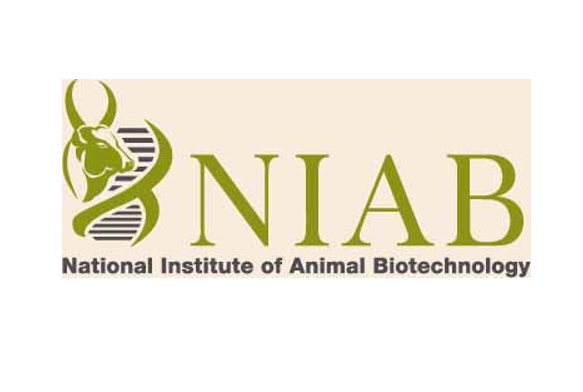 JOB POST: Project Assistant at NIAB, Hyderabad: Apply by Sep 26