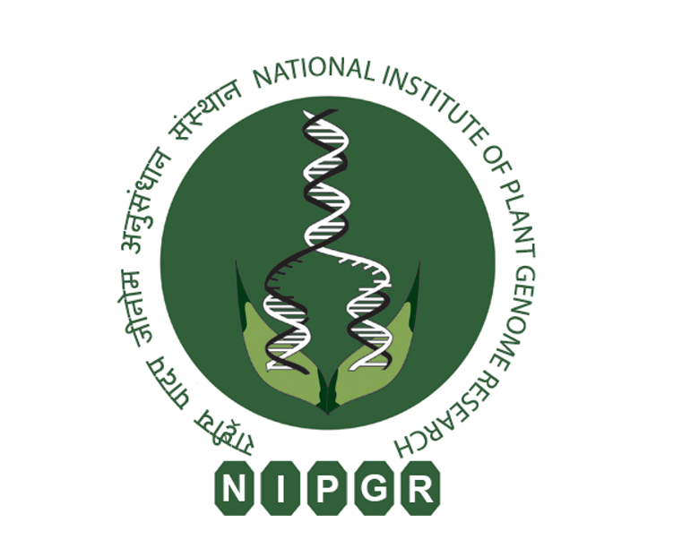 NIPGR Trainee fellow job