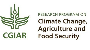 Call for Proposals: Cliff Grads Program at Research Program on Climate Change, Agriculture and Food Security, Netherlands: