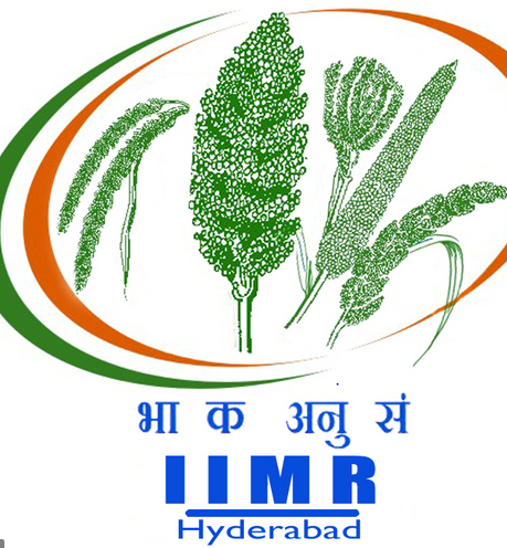 job multiple posts indian institute millets research hyderabad