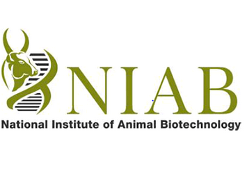 JOB POST: Junior Research Fellow at National Institute of Animal Biotechnology, Hyderabad: Apply by Oct 3