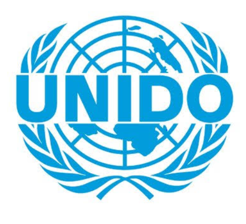 Internship in Research and Statistics at United Nations Industrial Development Organization: