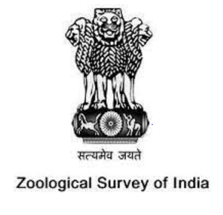 JOB POST: Junior Research Fellow (Zoology/ Life Sciences) at Zoological Survey of India, Kolkata: