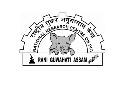 JOB POST: SRF and Young Professional-II at ICAR-National Research Centre on Pig, Guwahati [3 Vacancies]: Walk in Interview on Nov 16, 27: Expired