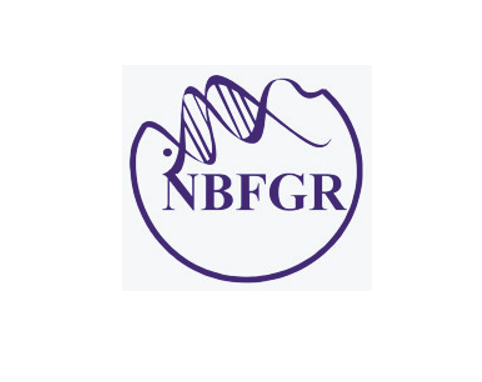 JOB POST: Research Staff and Young Professional at ICAR-National Bureau of Fish Genetic Resources, Lucknow [4 Vacancies]: Walk in Interview on Nov 13: Expired