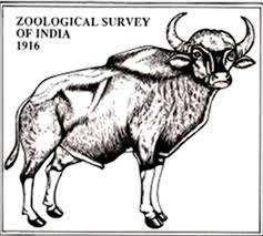 JOB POST: Post Doctoral Fellows at Zoological Survey of India [5 Vacancies, Multiple Locations]: Apply by Feb 21
