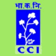 job managerial positions cotton corporation india
