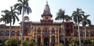 Junior Research Fellow IESD-BHU Varanasi