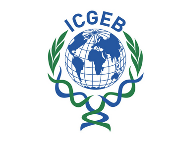 JOB POST: Post-Doctoral Fellow/ RA at ICGEB, New Delhi [Monthly Fellowship Rs. 58k]: Apply by May 3