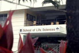 Manipal School of Life Sciences, Manipal job