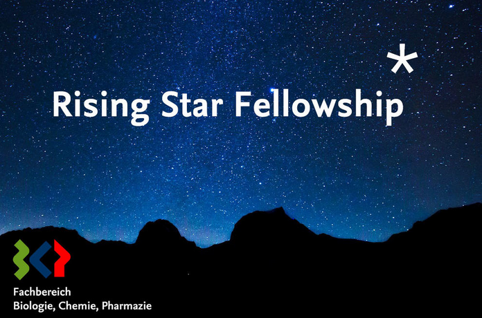 Rising Star Fellowships at The Free University of Berlin, Germany [Monthly Fellowship Rs. 2L]: Apply by May 31