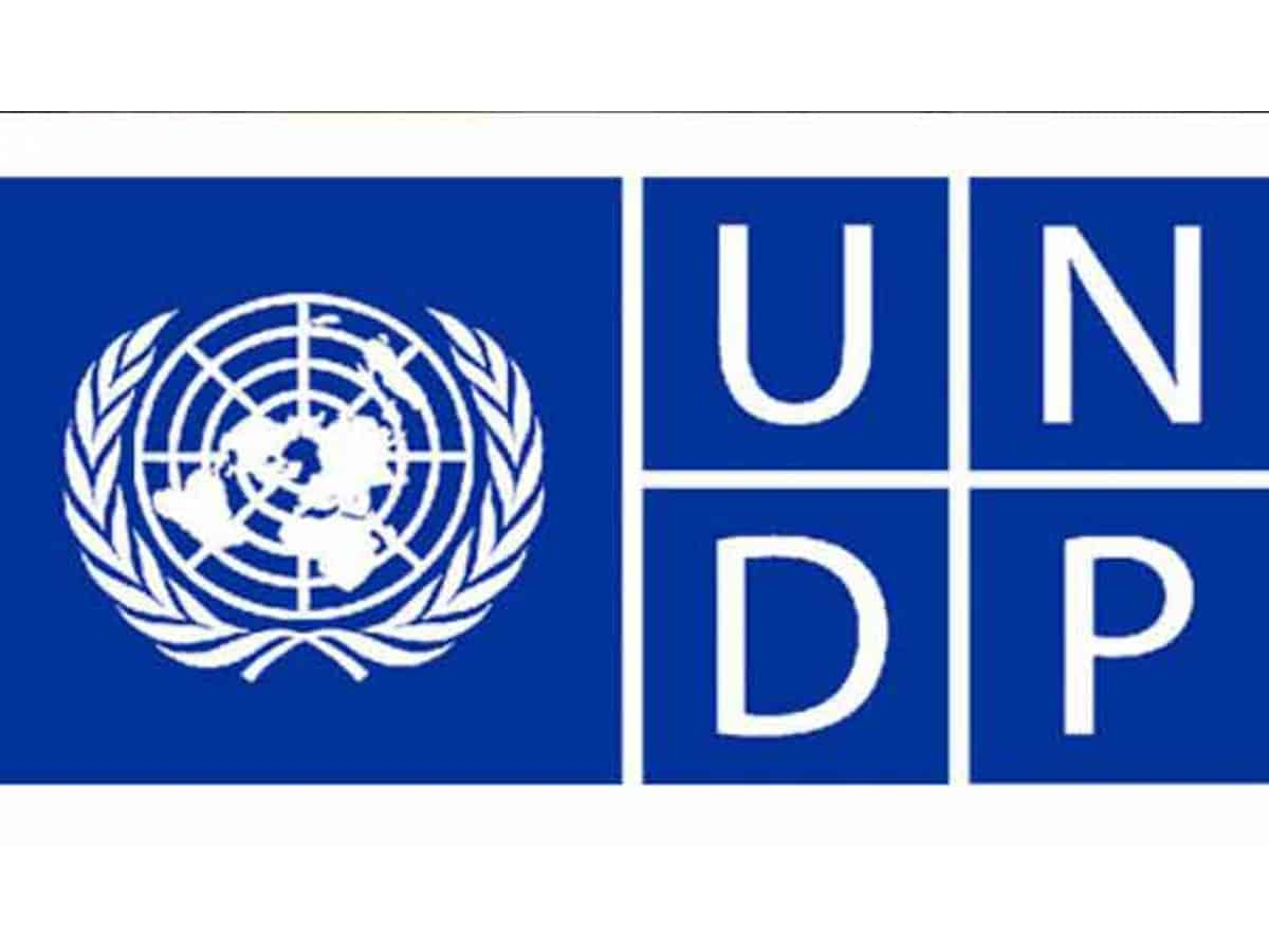 UNDP Project Assistant job 2020