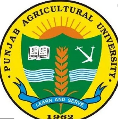 JOB POST: Assistant Professors at Punjab Agricultural University, Ludhiana [6 Vacancies]: Apply by June 8: Expired