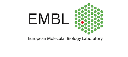 JOB POST: Postdoctoral Fellow-Gene Editing and Systems Biology at EMBL Heidelberg: Apply by July 7