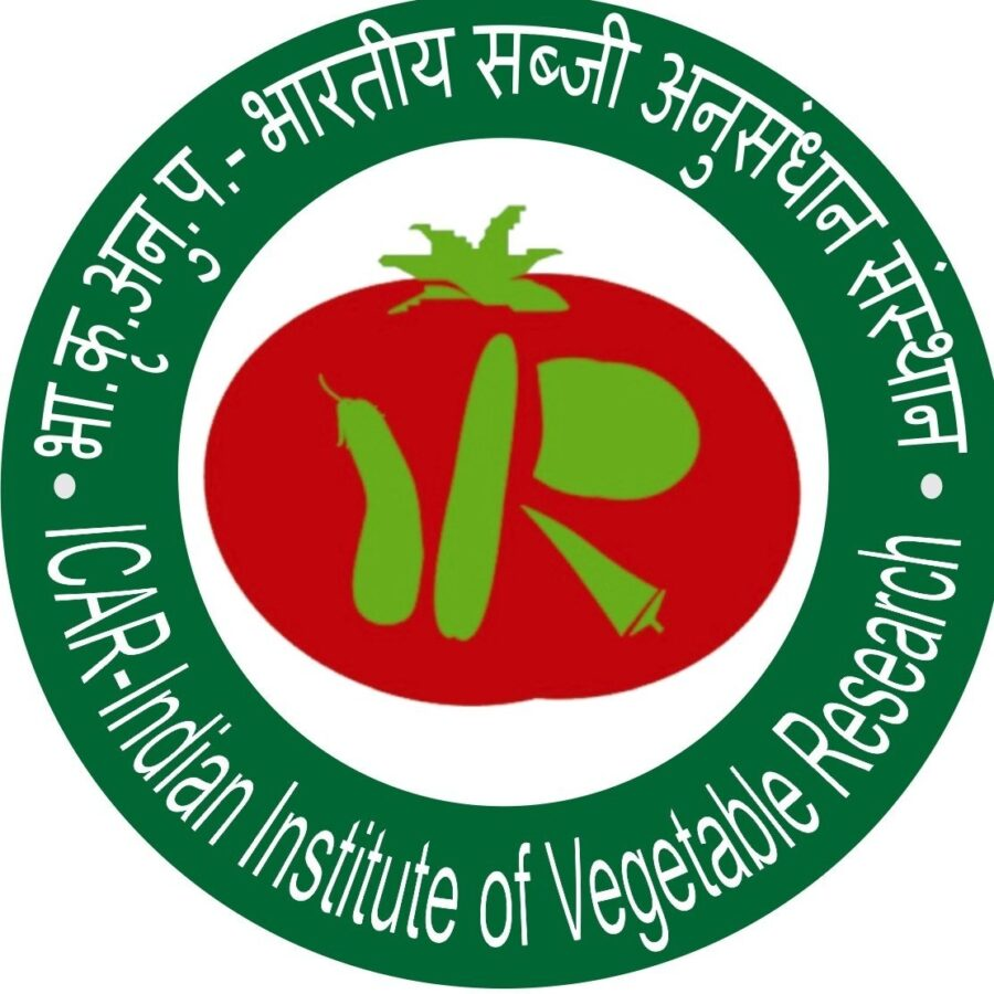 ICAR-Indian Institute Of Vegetable Research recruitments