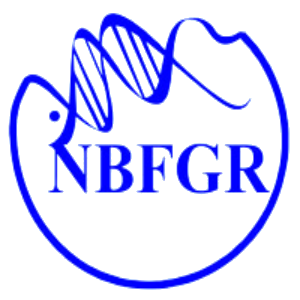 NBFGR Young Professional Recruitment 2020
