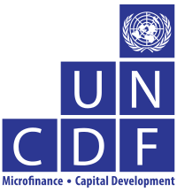 UNCDF Digital Finance Internship 2020