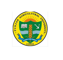 JOB POST: Office Assistant at Punjab Agricultural University, Ludhiana: Apply by June 26: Expired