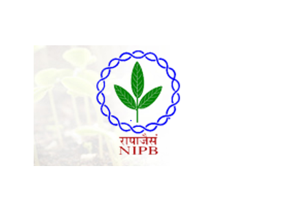 Project Positions (Under DBT Funded Project) at ICAR-NIPB, Delhi [4 Vacancies]: Walk-in-Interview on July 14