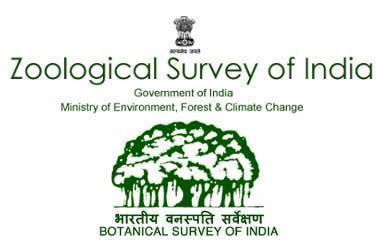 Junior Project Fellows & Project Assistant at Zoological Survey of India, Kolkata [4 Vacancies]: Apply by Jul 27
