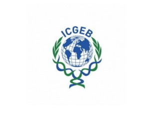 Junior Research Fellow (JRF) Under DBT Funded Project at ICGEB, New Delhi: Apply by Aug 5: Expired