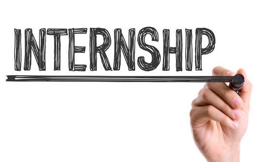 Internship Opportunity at National Institute of Urban Affairs, Delhi: Applications Open