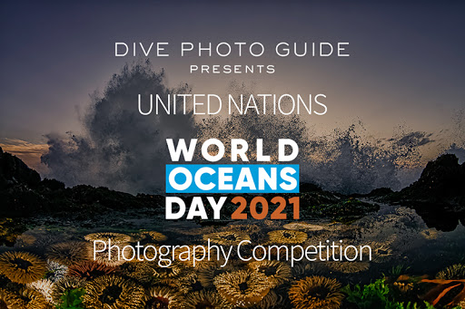 United Nations World Oceans Day Photo Competition 2021