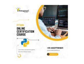 Online Python Bootcamp for Beginners by Robogeneis: Register Today!