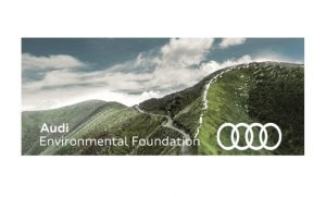 Audi Environmental Foundation Scholarship 2019 for One Young World Summit @ London
