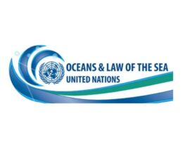 United Nations – Nippon Foundation Fellowship 2022: Apply by Sep 24: Expired